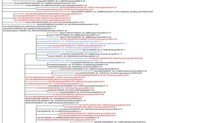 2020-03-09_covid19_combinedcov50uniquepatients_GISAID.phy_phyml.tree