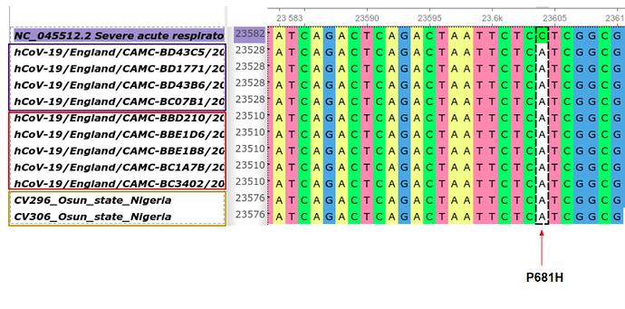 Screenshot from 2020-12-23 12-37-31