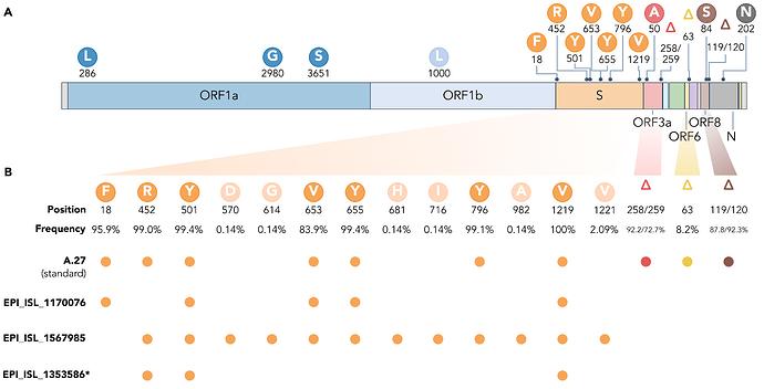Figure_4_A27_genome