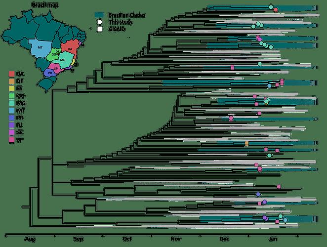 Virological_report_Moreira-2021.Figure-1